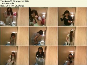 Kame Toilet 66