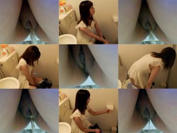 Hiroshi Toilets dwt003_0440_01
