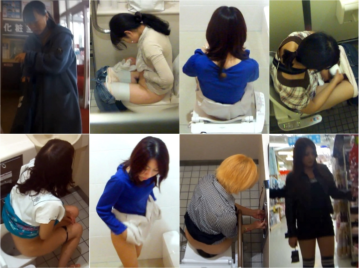 28103897 H-V.Japanese toilet style.No,124